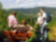 Wandern im Naturpark Zittauer Gebirge